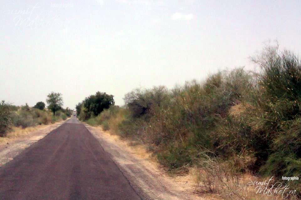 The road back from Dandkala ... These are simple village roads (not even state highways) and in such great condition that they can put the city roads to shame.