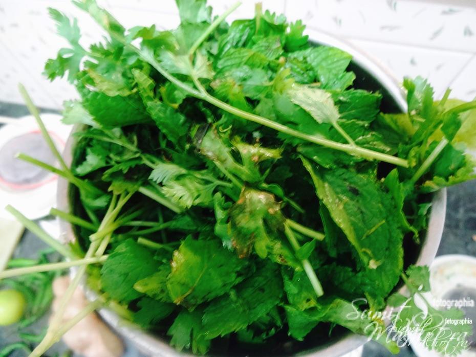 Add coriander and blitz