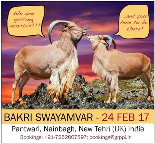 Bakri Swayamvara, Bakri Swayamvar
