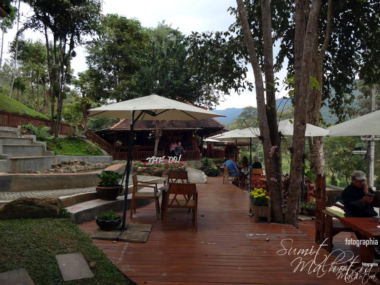 Lush Green & Picturesque Doi Chaang - The Doi Resort