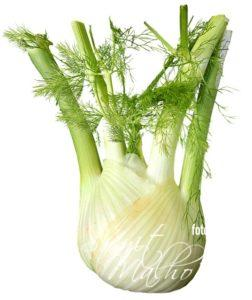 fennel - health benefits of fennel seeds