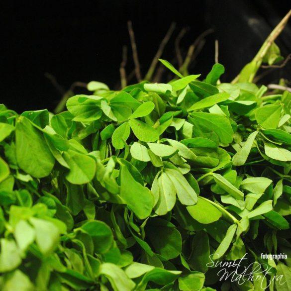 Methi or Fenugreek Leaves - How to make Kasoori Methi