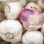 Garlic - Immunity Booster Spices