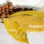 Allspice or kababchini - dried berries & leaves