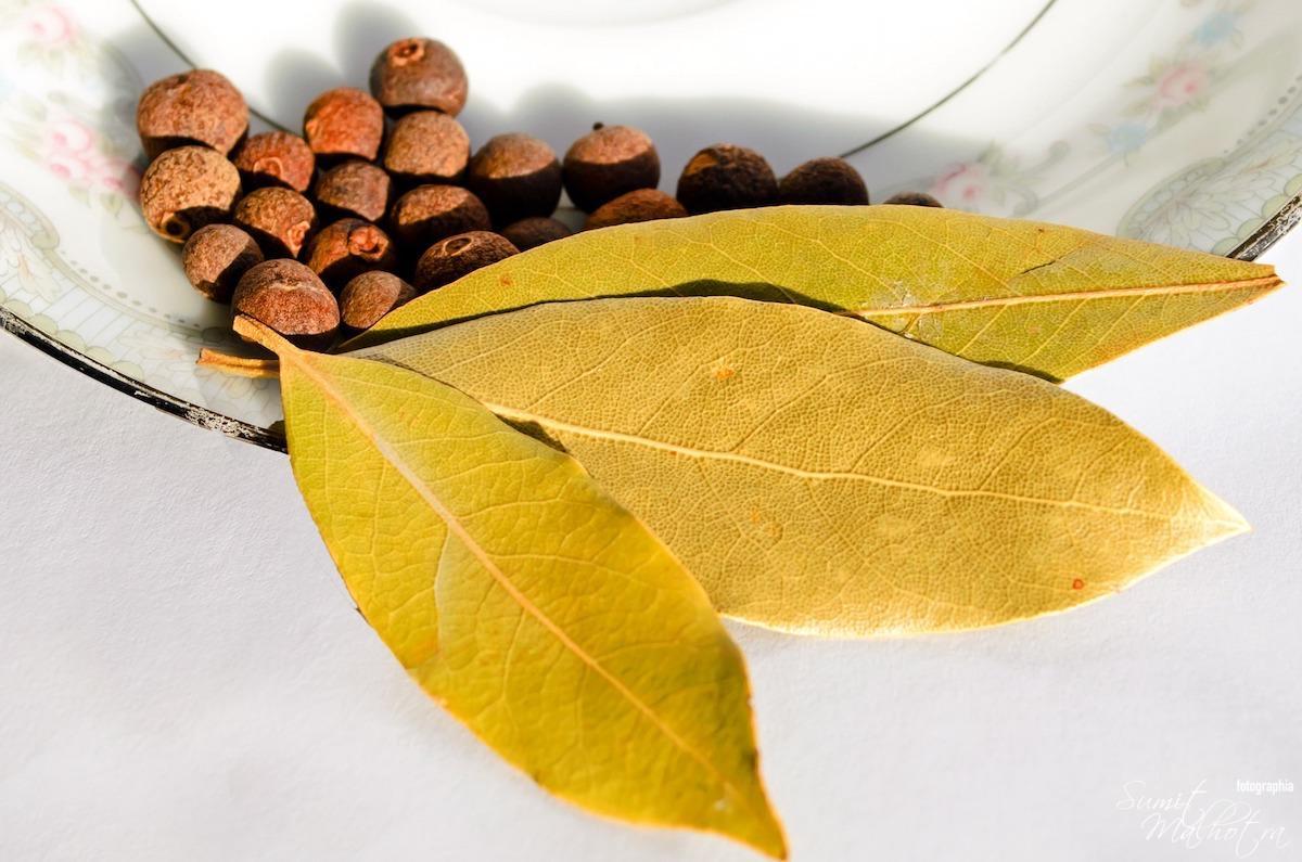 Aromatic bay leaf (Laurus nobilis L)