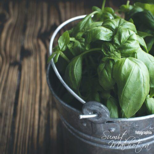 Health benefits of basil, benefits of tulsi