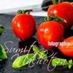 Health Benefits of Tomatoes | All About Your Tomato (Solanum lycopersicum)