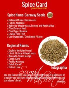 All About Caraway Seeds | Shahi Jeera | Siyahi Jeera