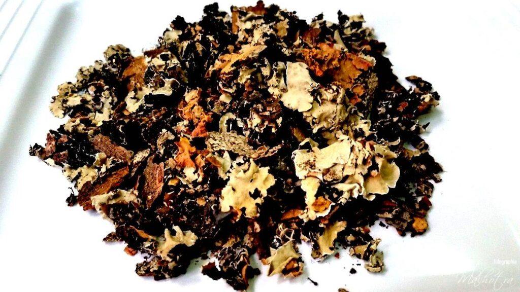 All About Dagar Phool | Know Your Spice Stone Flower or Kalpasi (Parmotrema perlatum)