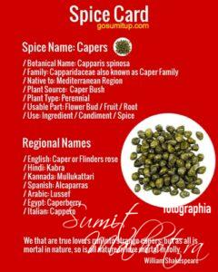 Spice Card Capers (Capparis spinosa)