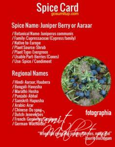 Spice Card - All About Juniper Berry | Know Your Spice Aaraar or Arar (Juniperus communis)