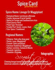 Spice Card - All About Lovage | Know Your Spice Lovage.jpg