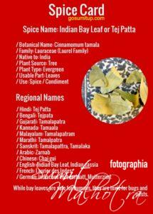 Spice card - all about indian bay leaf | know your spice tejpatta (cinnamomum tamala)