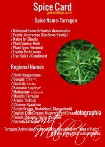 Spice Card - All About Tarragon | Know Your Spice Naagadauna (Artemisia dracunculus)