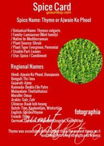 Spice Card - All About Thyme | Know Your Spice Ajwain Ke Phool (Thymus vulgaris)