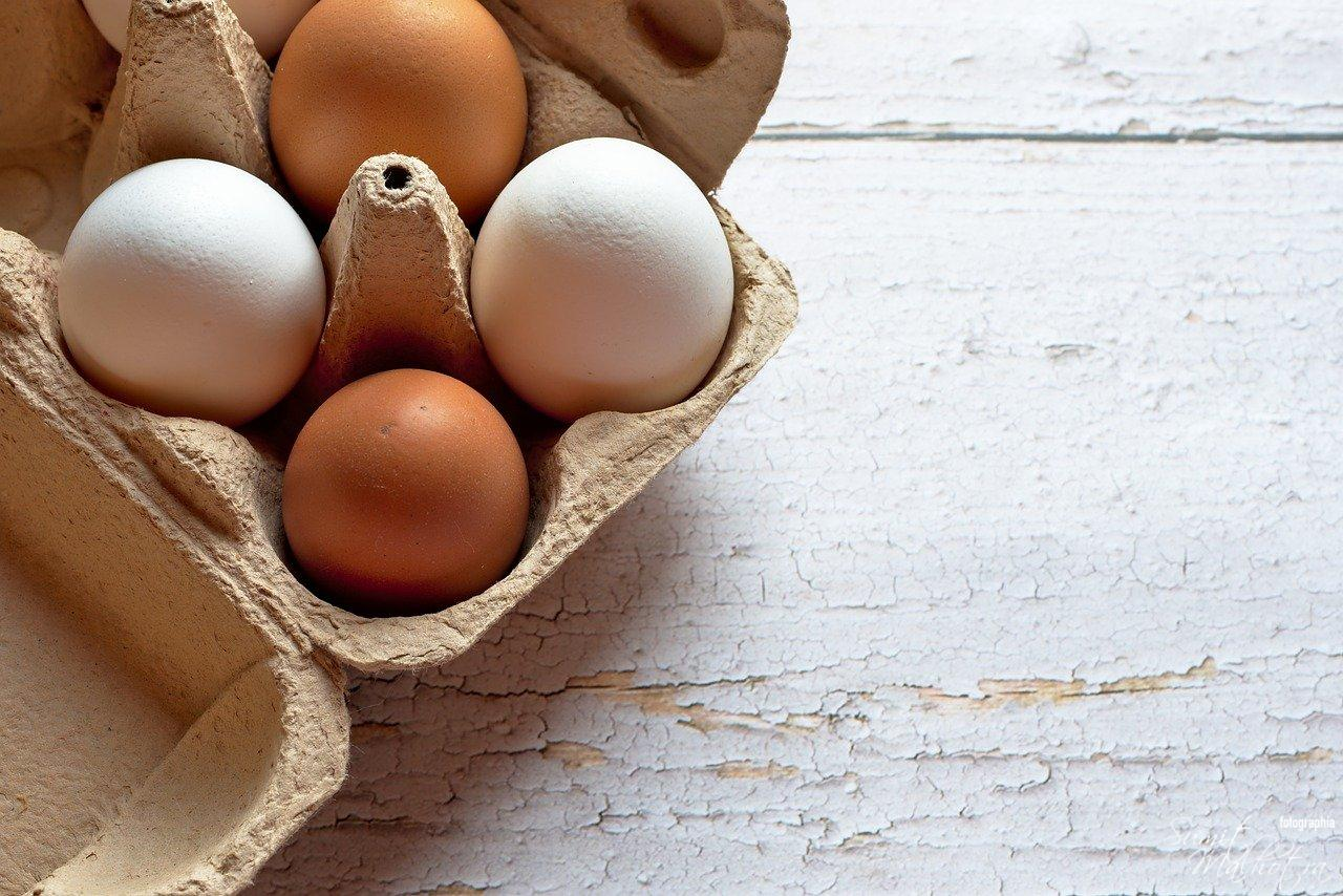 All About Eggs or Ande   Get to Know the Chicken Egg or Anda